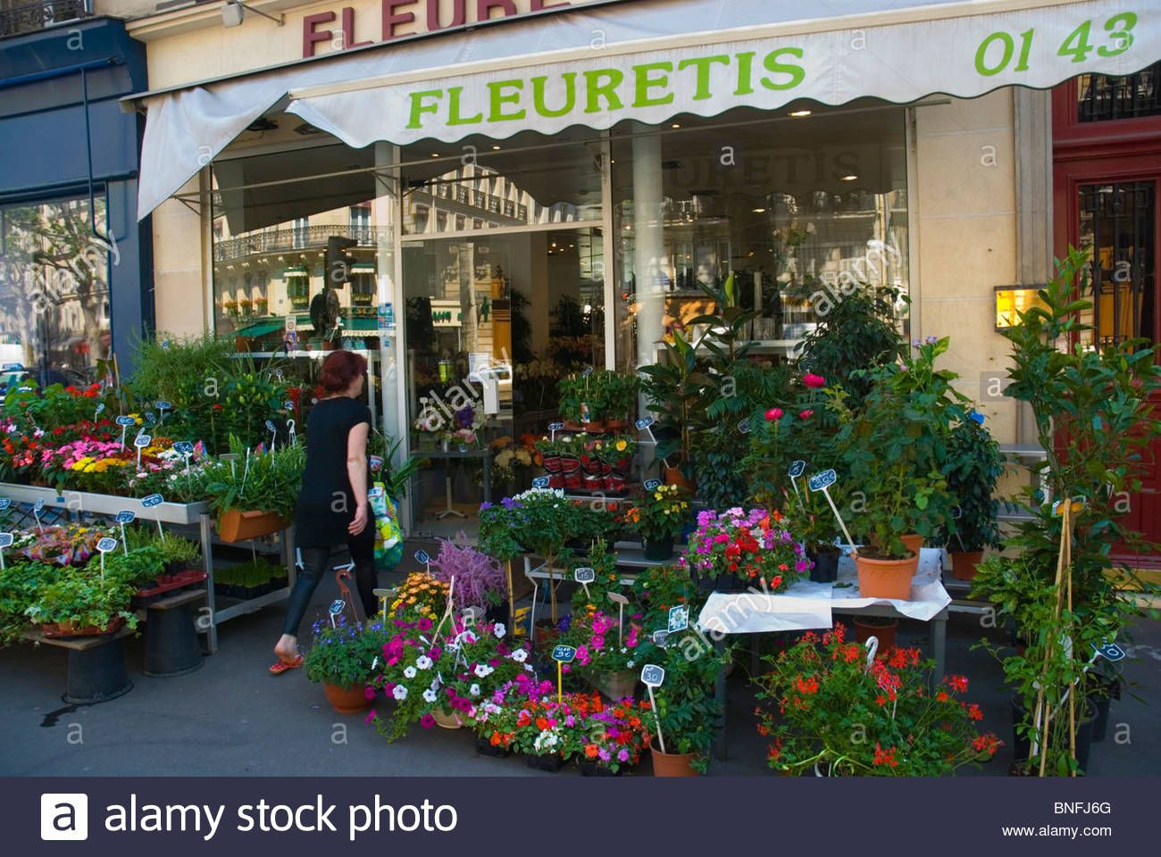Flower Shop Latin Quarter Paris France Europe Stock Photo