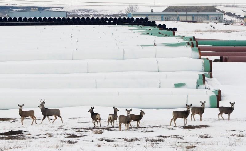 WASHINGTON (Reuters) Nebraska regulators weighing the