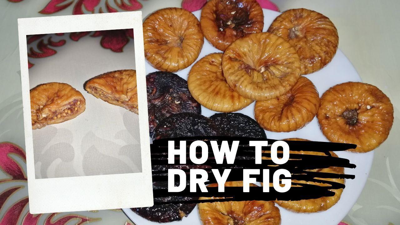 How To Dry Figs At Home I Sun Dried Figs طريقة تجفيف التين الكرموس في المنزل Dried Figs Fig Food