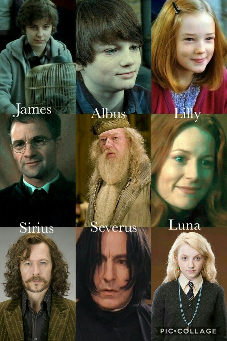 Pin By Ali Deo On Hp Harry Potter Tumblr Harry Potter Facts Harry Potter Funny