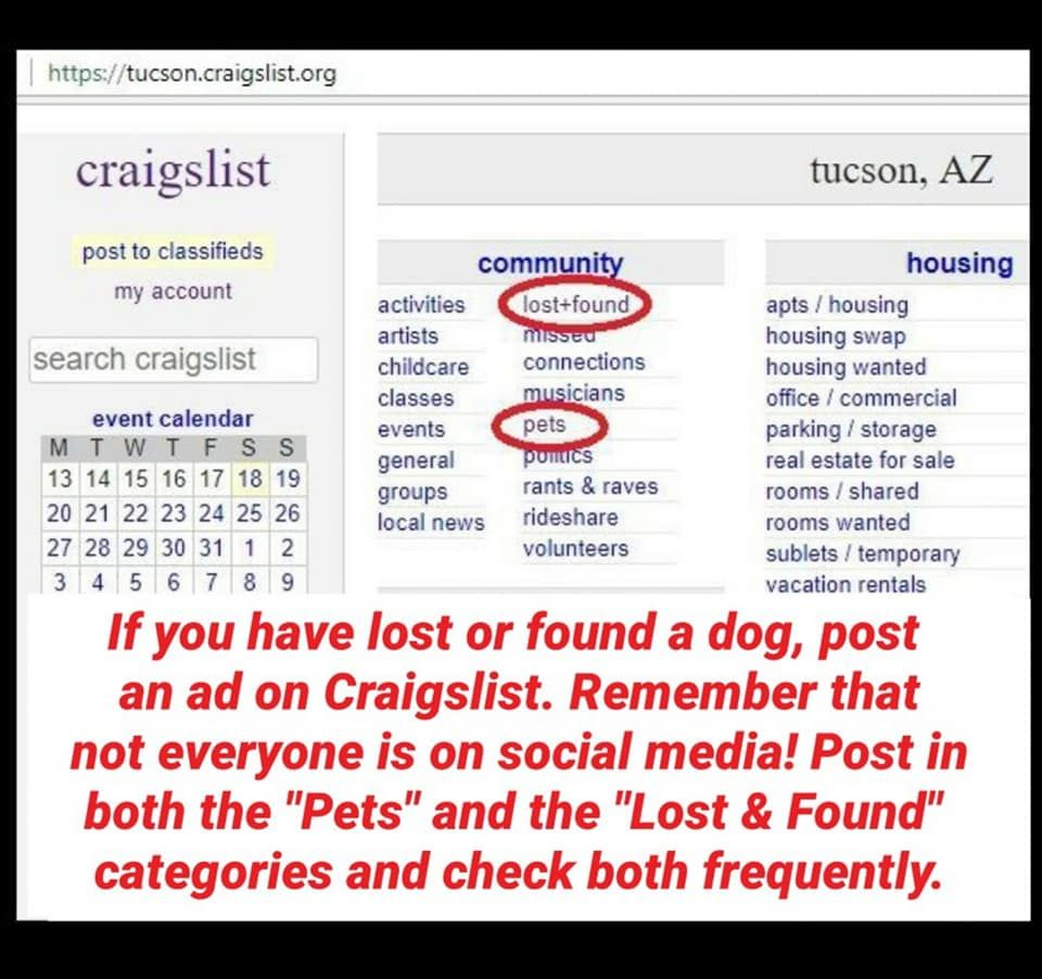 Not Everyone Has Social Media Posting To Public Platforms Also Allows You To Reach More People Losing A Pet Losing A Dog Lost Found