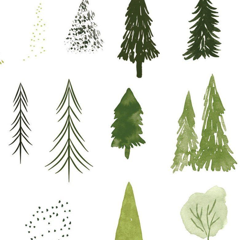 Watercolor Forest Trees Clipart Set Abstract Woodland