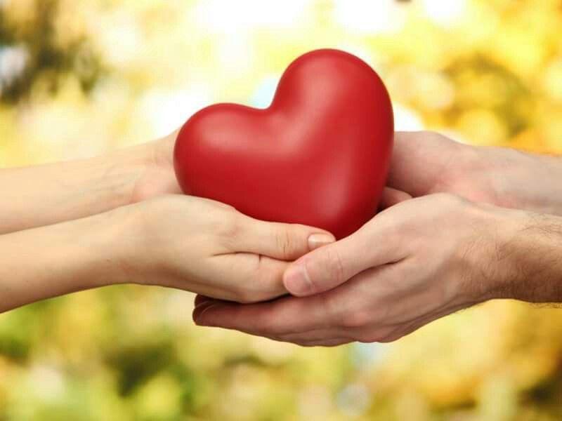 El corazón apacible es vida de la carne; Mas la envidia es carcoma de los huesos.   (Proverbios 14:30)