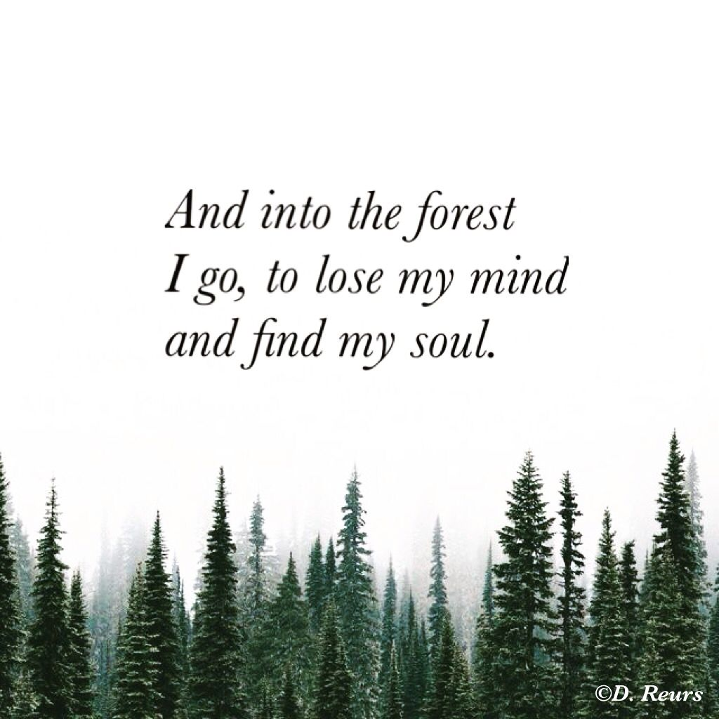 Forest Quotes: And Into The Forest I Go, To Lose My Mind And Find My Soul