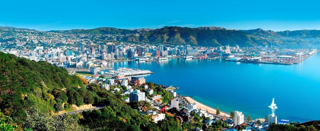 wellington new zealand scene