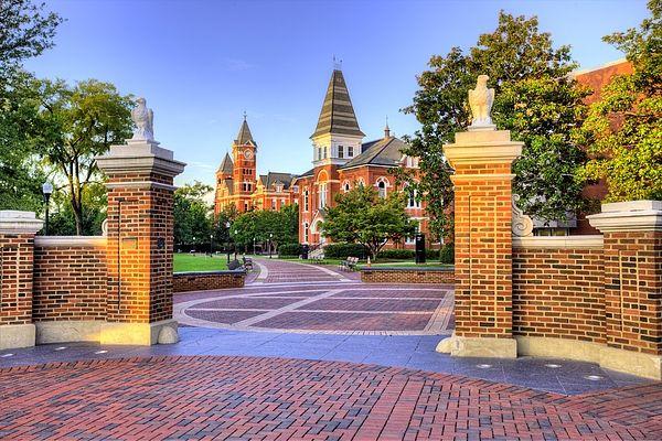 Auburn University Mornings By Jc Findley Auburn Campus Auburn