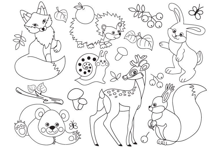 Forest Animals Animal Coloring Pages Cute Wild Animals Animal Clipart