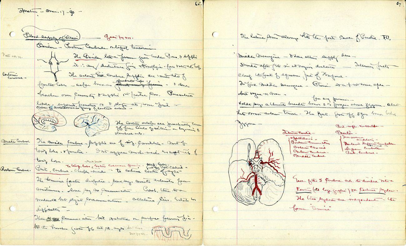 Harvey Cushing, Harvard Medical School - 1891 | Apprendimenti ...