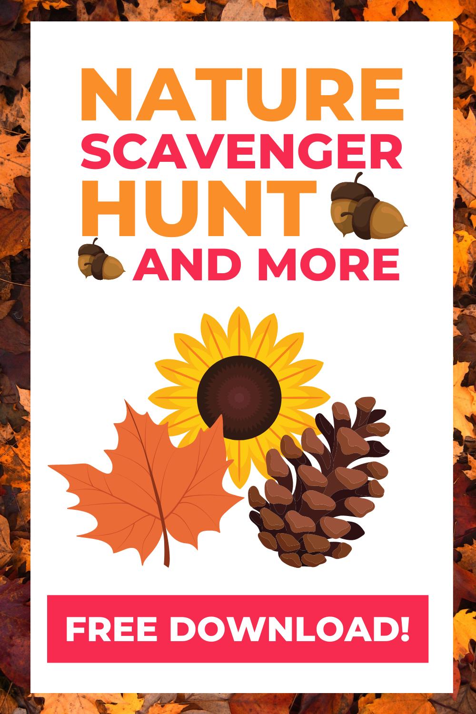 Get the November Nature Activity Kit!