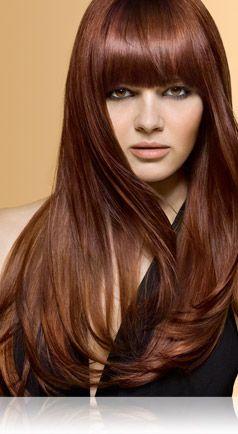 John Frieda 5c Medium Copper Brown With Images Chestnut Hair