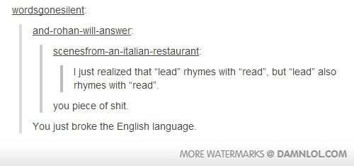 "Tumblr posts ""you just broke the english language"" xD"