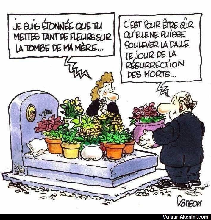 """Résultat de recherche d'images pour """"humour fleurs"""""""