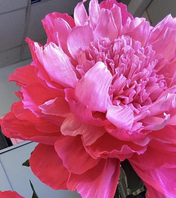 Peonies Giant Crepe Paper Flowers Paper Flowers Flowers Crepe