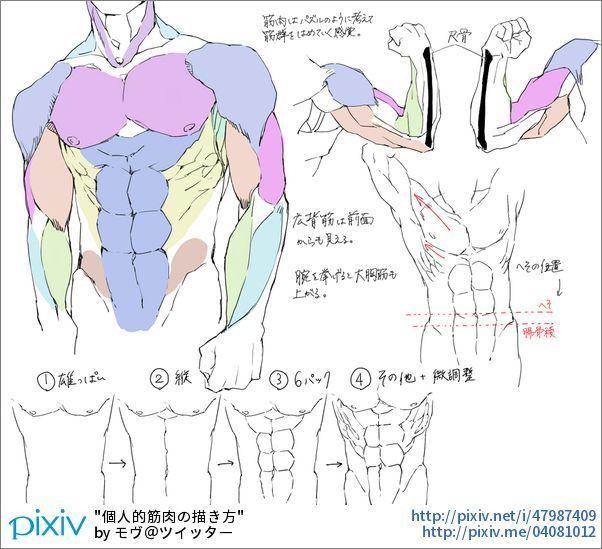 Male Torso Arms Up Drawings - #drawings #torso - #MaleTorso