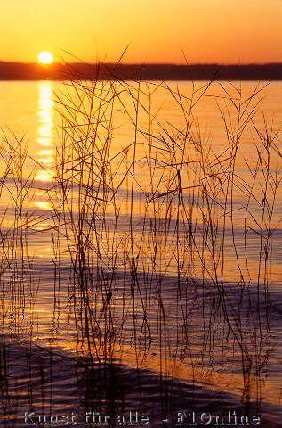 Wasserspiegelung Bei Sonnenuntergang Starnberger See Bayern Deutschland Starnberger See Sonnenuntergang Naturbilder