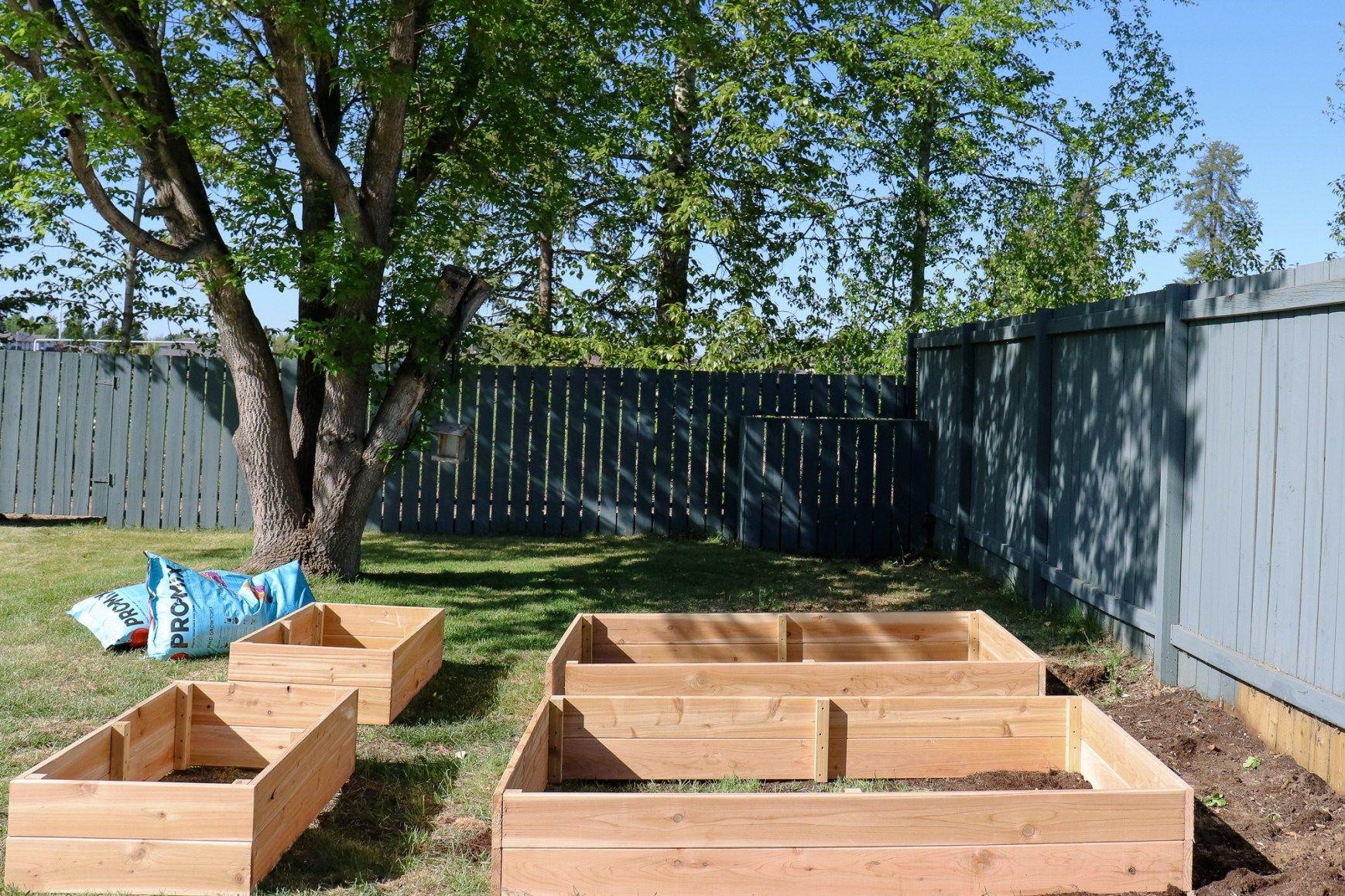 How to Build your own DIY Raised Garden Bed | Garden beds ...