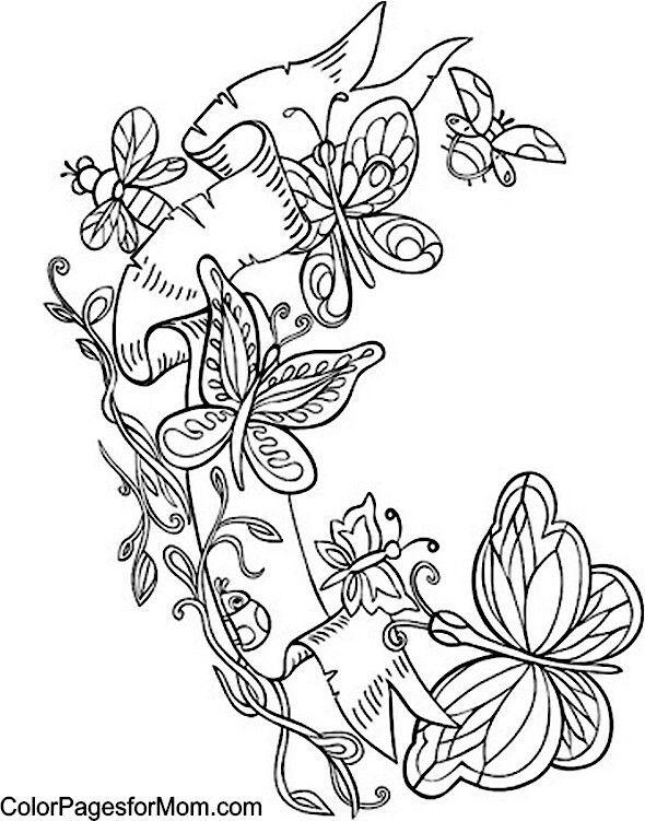 Pin by Pamela McHatten on Butterflies   Butterfly coloring ...