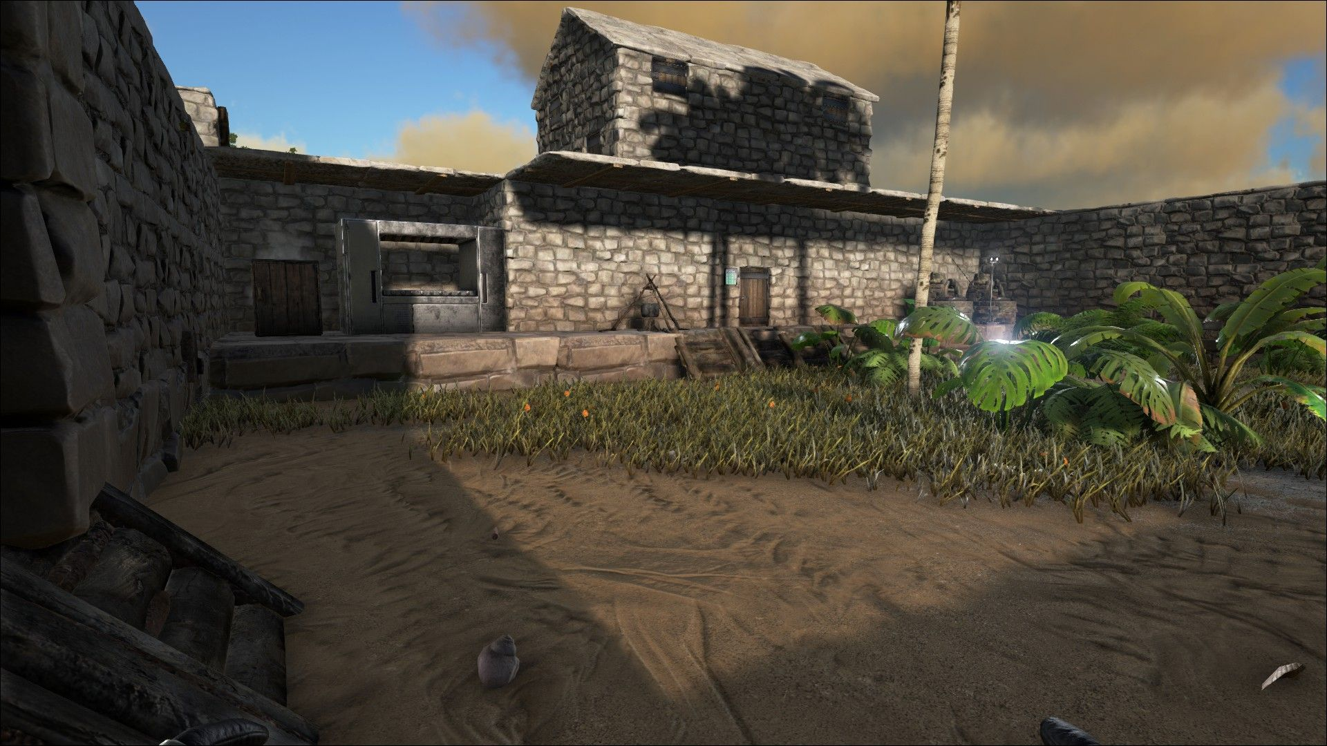 Ark, Survival