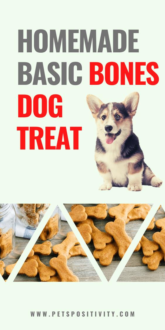 EASY HOMEMADE BASIC BONES DOG TREAT
