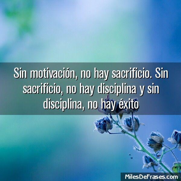 Disciplina!!