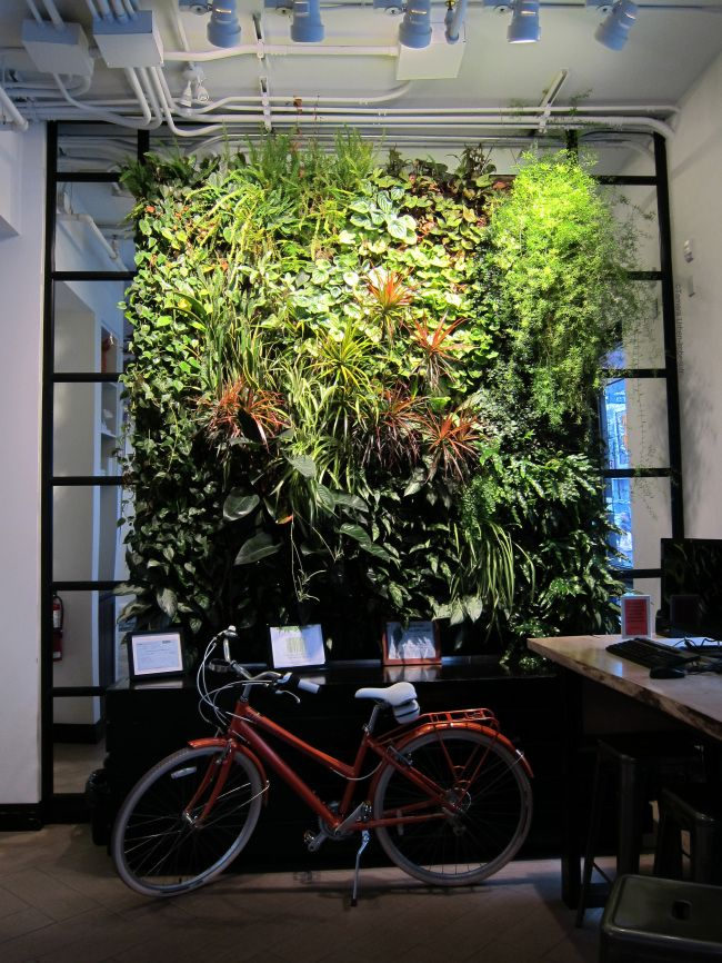 Vertical Garden at ING Direct Cafe, by Green Over Grey. Image ©Tamara Urben-Imbeault