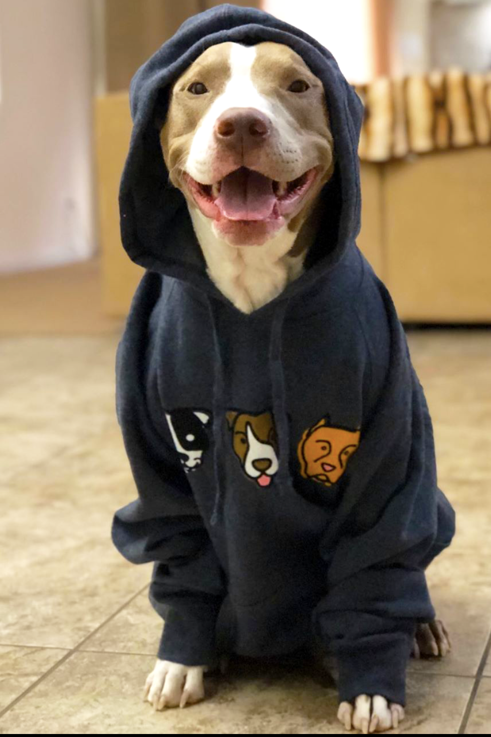 Must Love Pibbles Hoodie Pitbull Clothes Pitbulls Animal Shelter