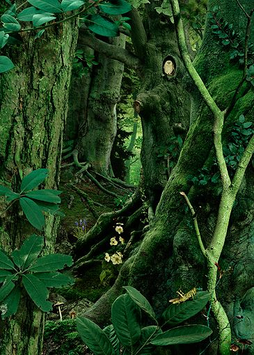 Ruud van Empel   STUDY IN GREEN #10