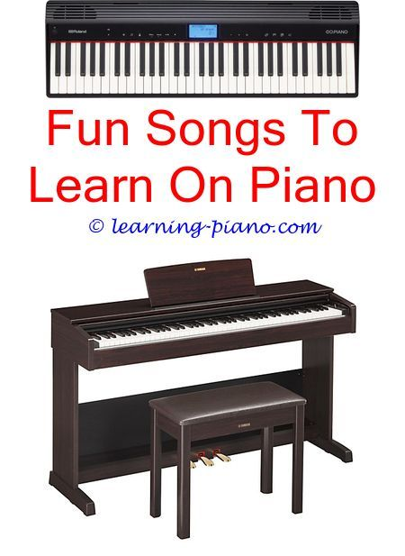 Pianobeginner Learn How To Play The Piano Accordion Just Chords