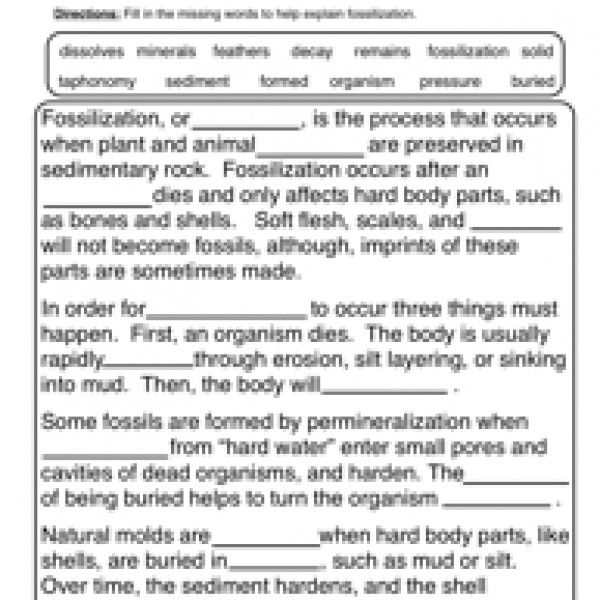 Earth science · fossils worksheet 1