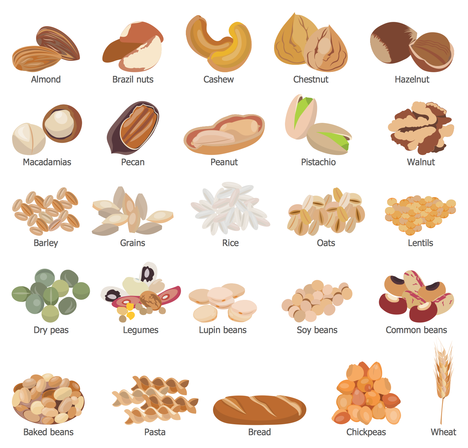 design elements � grains beans legumes nuts food and