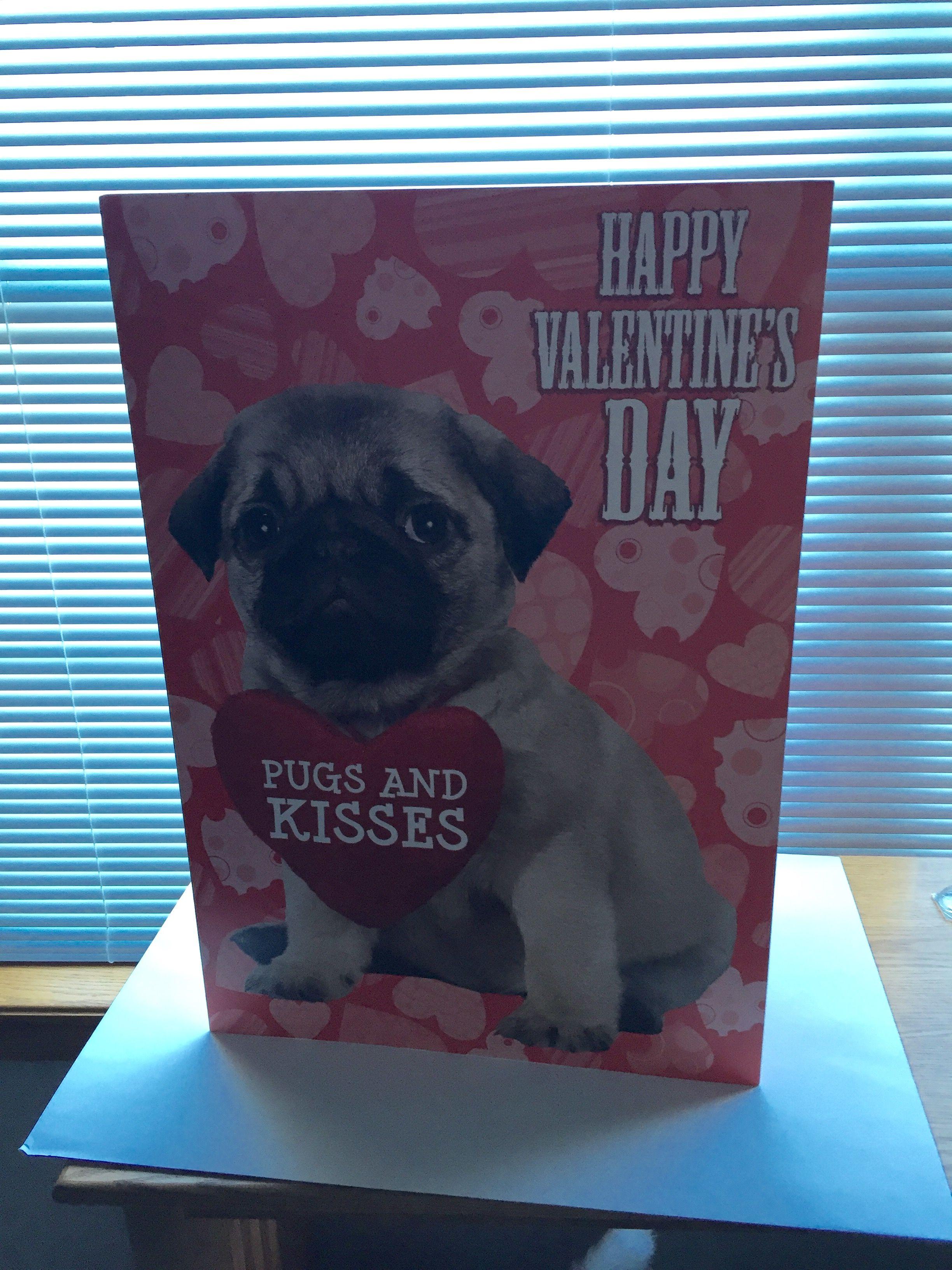 Pug Valentine Card Pug Valentine Pugs Kisses Happy Valentines Day