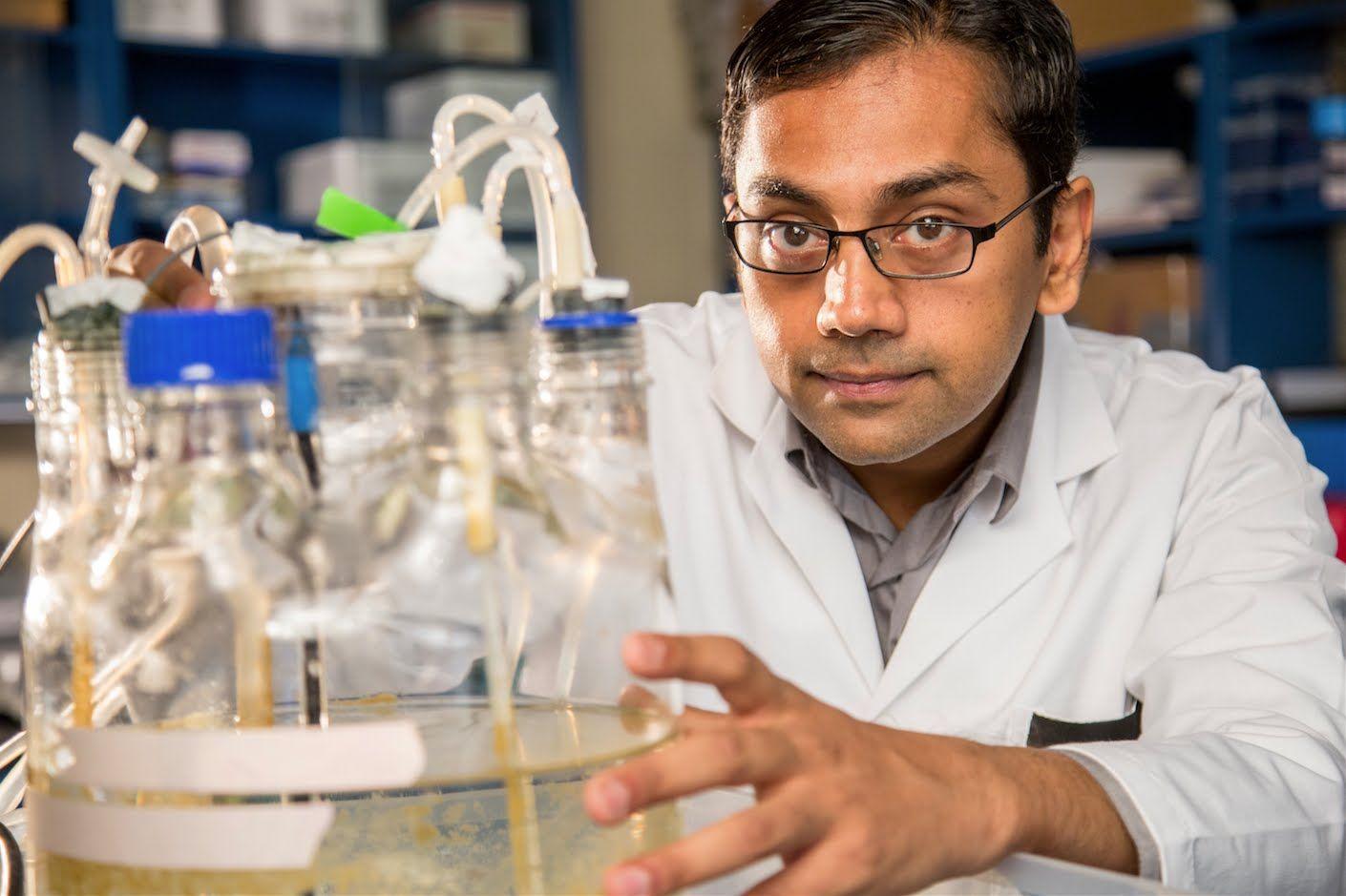 Environmental Engineer Kartik Chandran, 2015 MacArthur Fellow