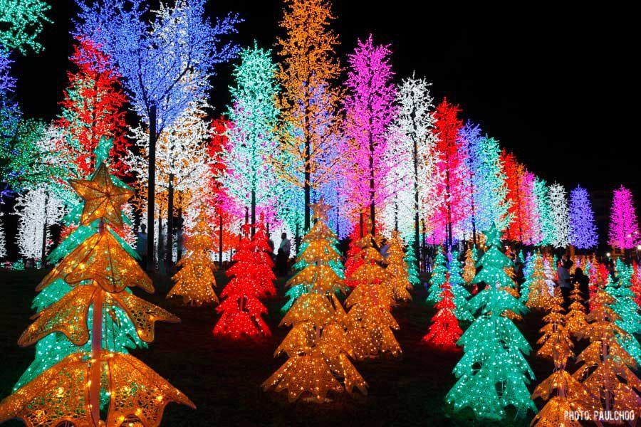 Pin by Kathy L Johnson on CHRISTmas Outdoor christmas