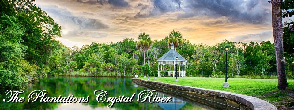 Ocala Magazine: Wedding Destinations Part 2 - Plantation on Crystal River ~Ocala Magazine August, 2013~ Written By: David Moore