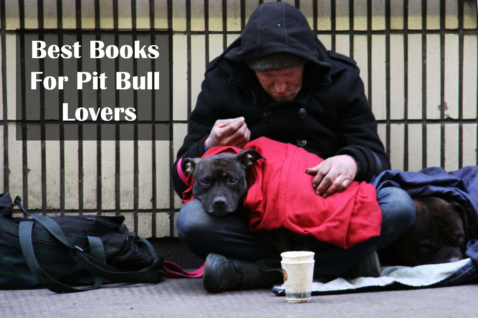 Pin by on Best animal books Helping