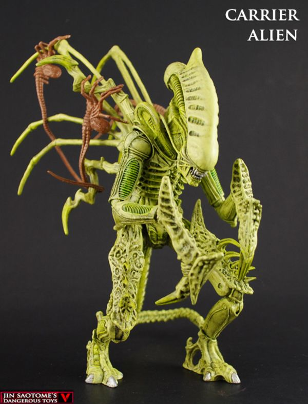 Custom NECA Style AvP Carrier Alien Figure By Jin Saotome ...