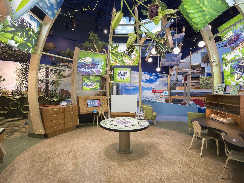 Discovery Zone Discovery zone, Discovery, Plant science