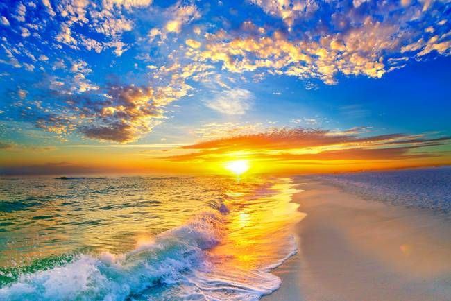 """golden sunset beach blue sky"""