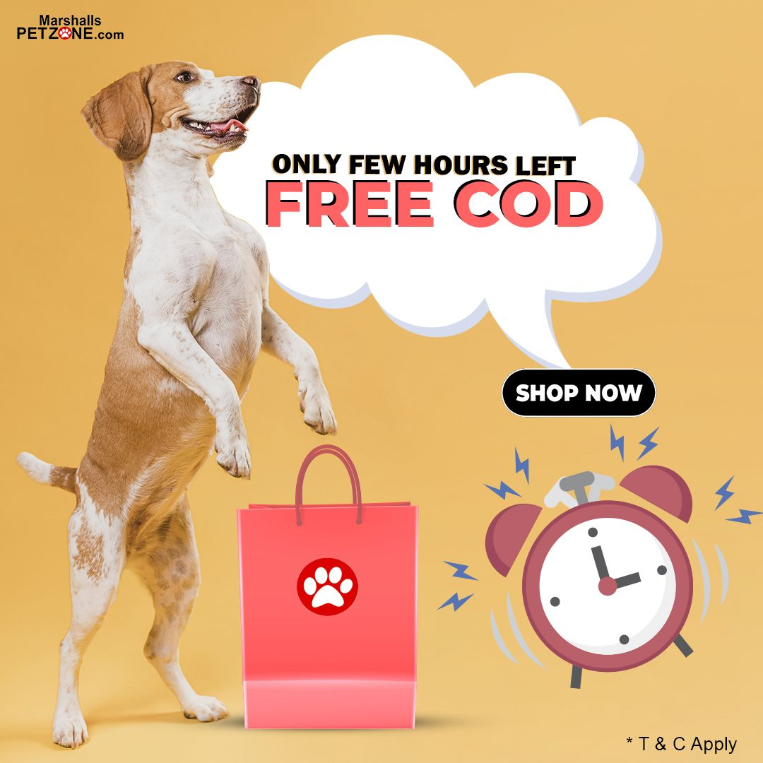 Only A Few Hours Left Free Cod In 2020 Buy Pets Food Animals Pets