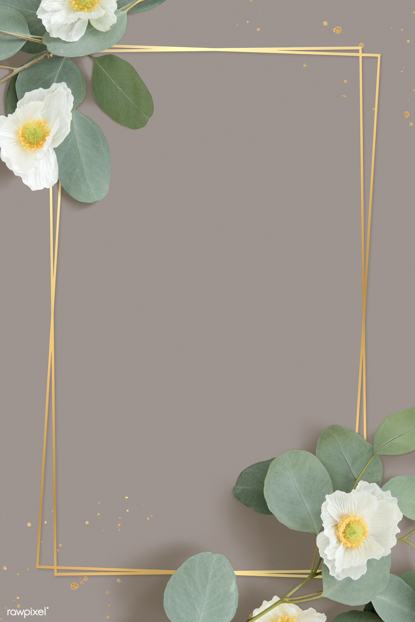 Download Premium Image Of Golden Rectangle Cherokee Rose Frame