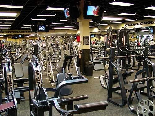 My Playground Physical Fitness Golds Gym Fitness Trends