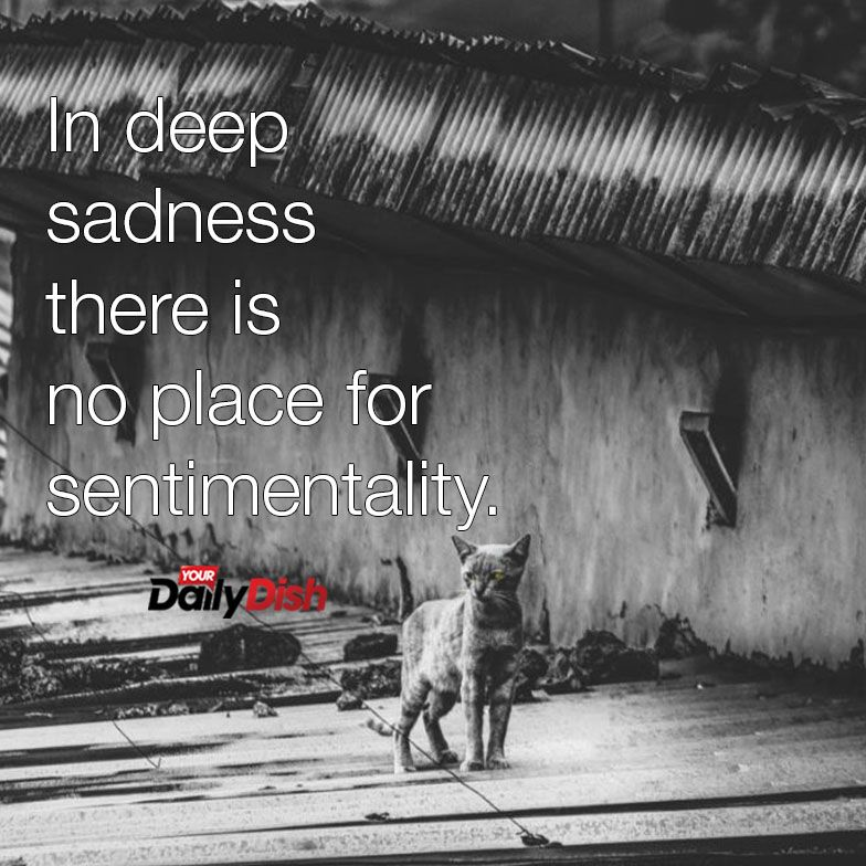 In deep sadness there is no place for sentimentality   Words