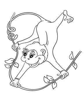 Ausmalbild Affen Baby Ausmalbilder Tiere Affen Baby Affen
