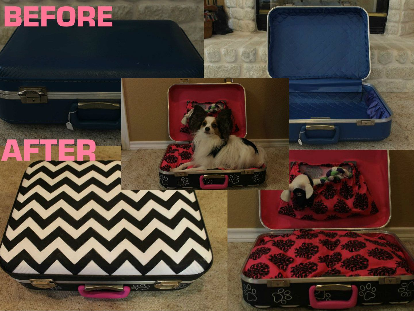 Old suitcase made into a dog bed!