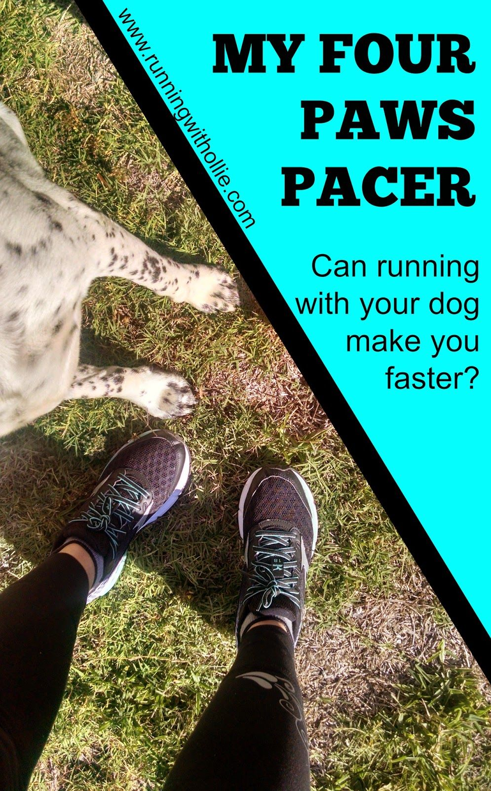My four paws pacer can running with your dog make you