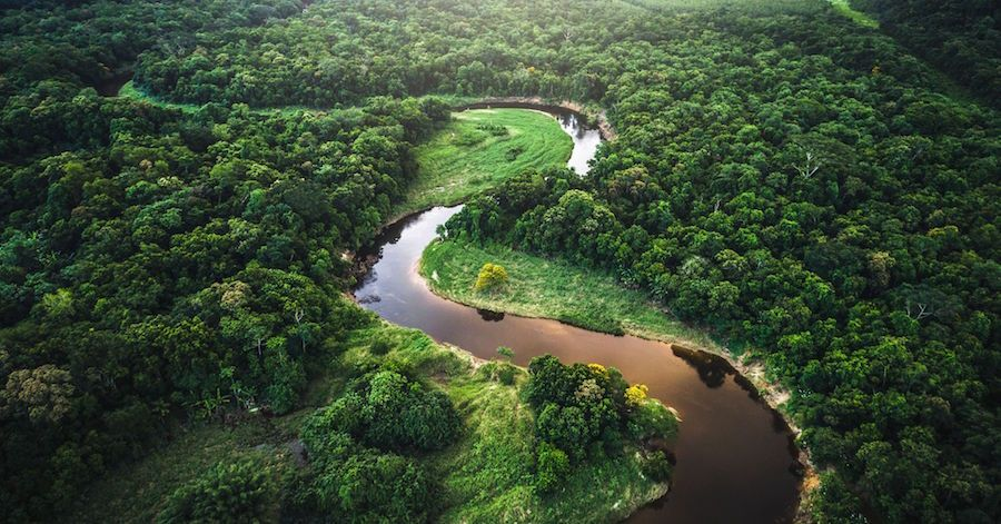 Amazon Rainforest Critical Is To Human Life Amazon Rainforest