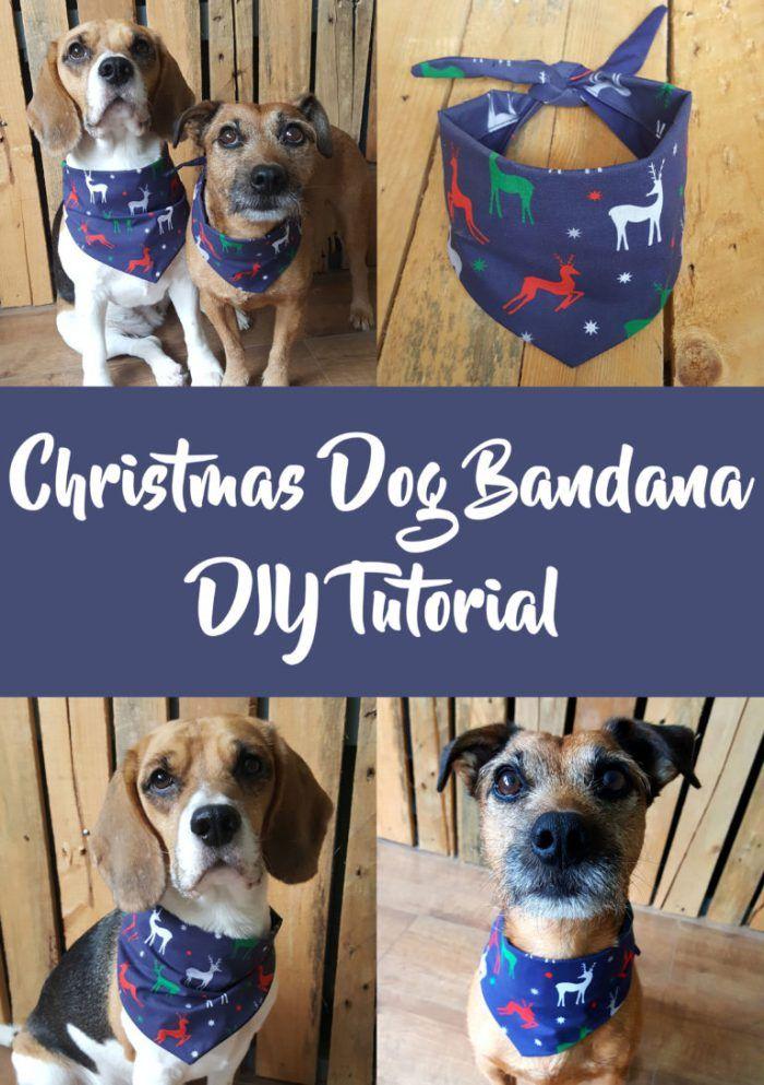 Dog Bandana Pattern Free Sewing Tutorial Diy Dog Coat