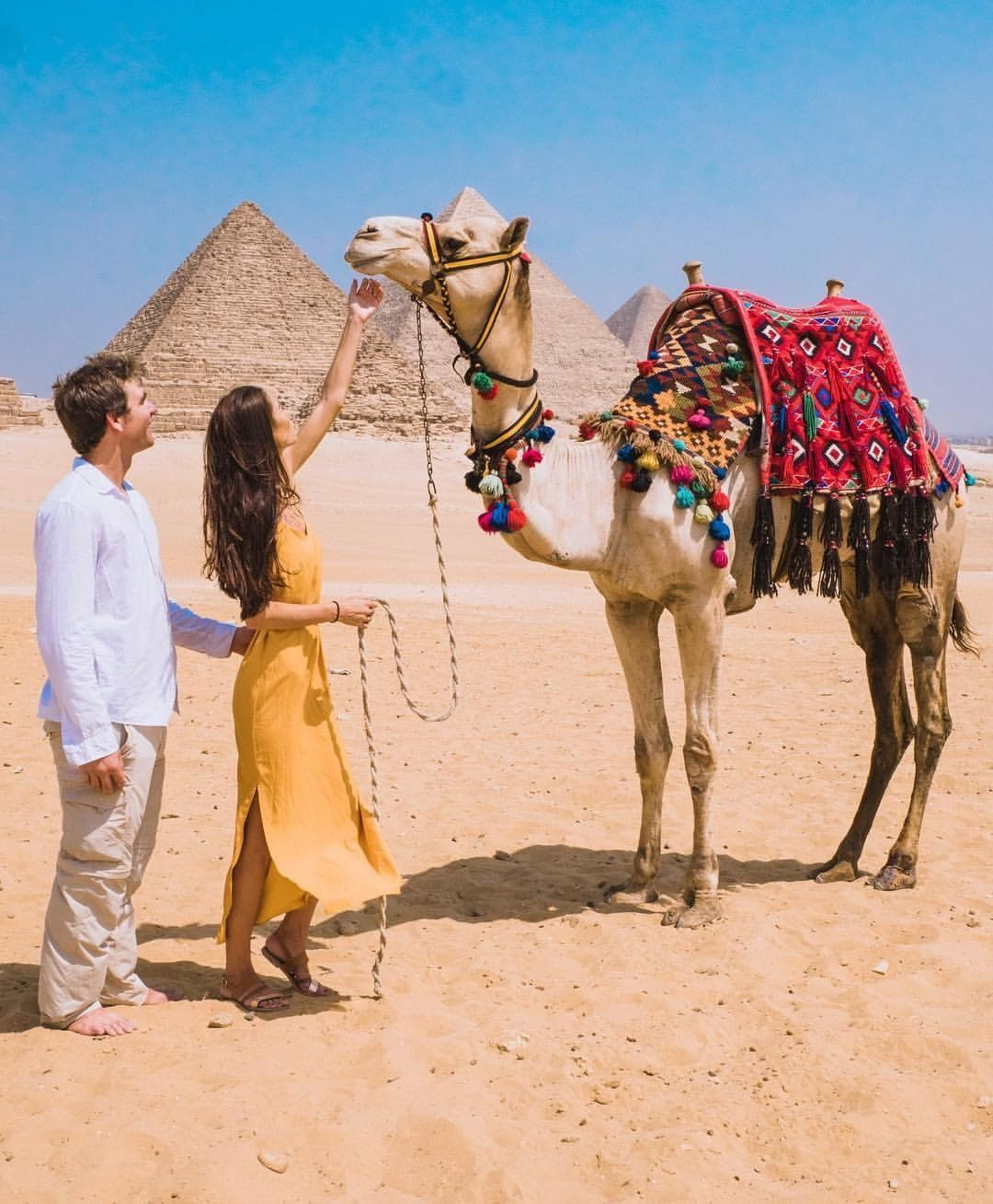 Egypt Tours 2019 in 2020 Places in egypt, Egypt travel