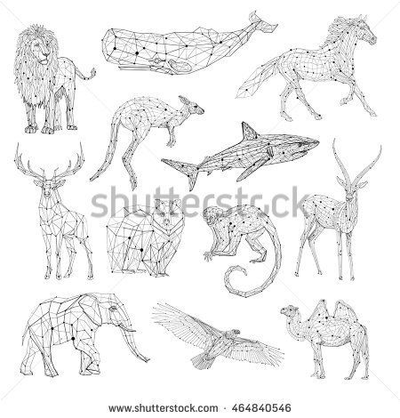 Low Poly Vector Animals Set Stylized Linear Wire Construction Concept Polygon Outline Isolated Illustrations Geometrical Triangles Connection