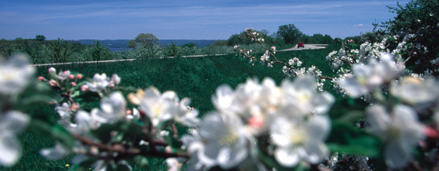 Driving down the Apple Blossom Byway from MSPMag's 90 Days